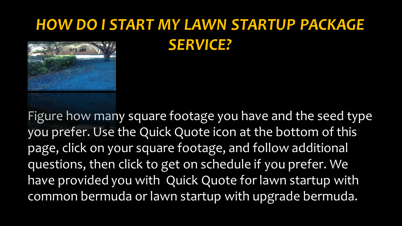 How Do i Start My Lawn Startup Package
